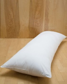 Best Pregnancy Pillow For Stomach Sleepers Smart Home