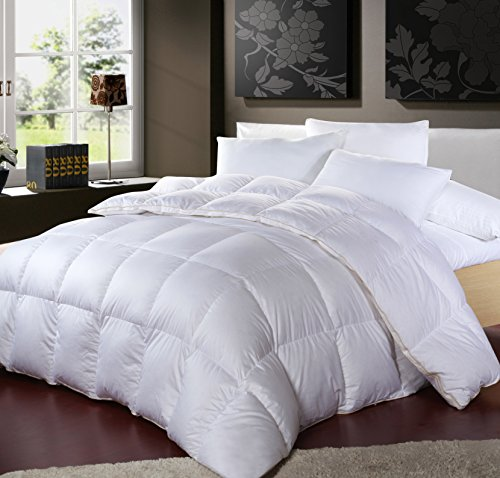 king full goose this suite feather queen just over kohls sale is down sizes get comforter on seasons all only comforters hotel cash to and in twin or for white hop where com