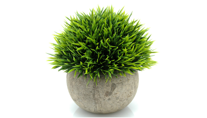 great office plants. Velener Mini Plastic Fake Green Grass Of Plants With Pots Live Up To The Hype Keeping Artificial Office Keep Employee\u0027s Area Neat And Great N