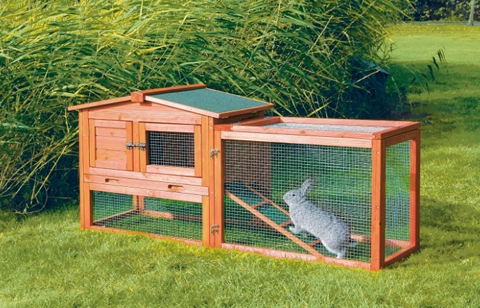 Best Rabbit Hutch Smart Home Keeping